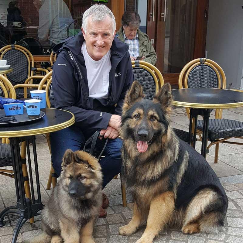 Cheshire Dog Services - Dog Walker in Hale