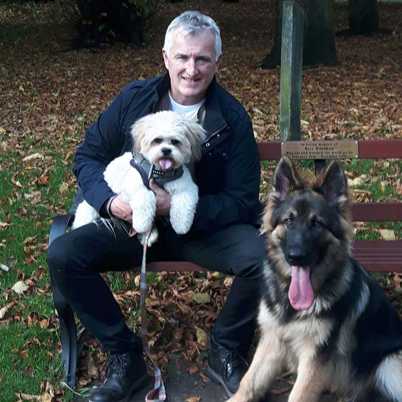 Cheshire Dog Services - Dog Walker in Altrincham