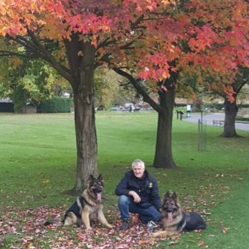 Cheshire Dog Services - Dog Walker in Alderley Edge