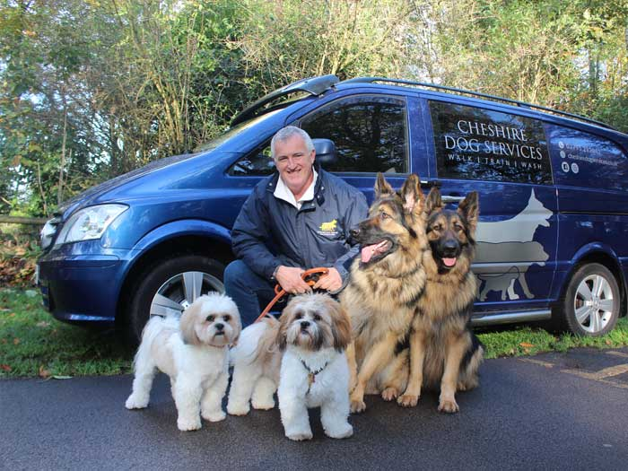 Cheshire Dog Services - Dog Walker in Knutsford